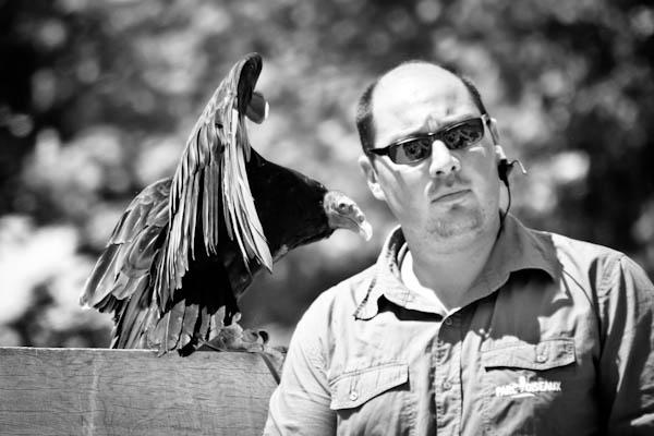 parc des oiseaux Lyon